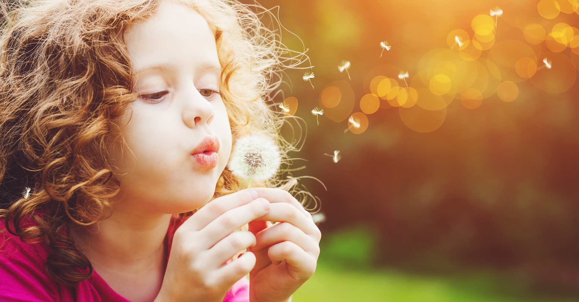 Little girl blowing on dandelion flower